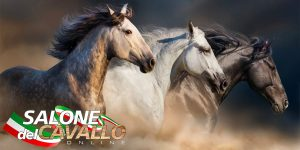 salone del cavallo online