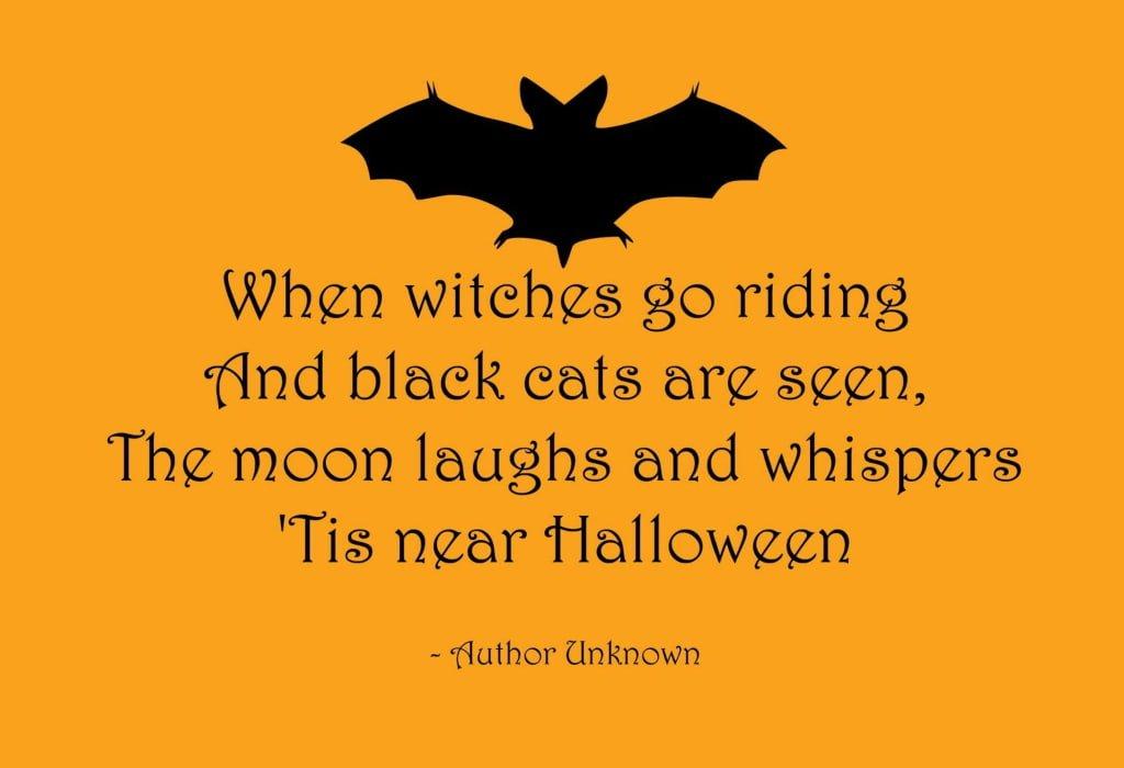 halloween citazione