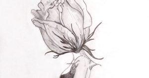 I petali dellanima